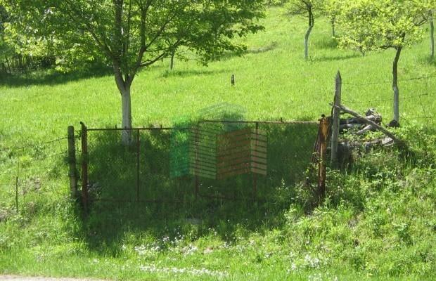 Снимка №6 Урегулиран парцел продава in Габрово област, Зелено дърво