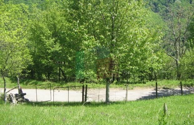 Снимка №14 Урегулиран парцел продава in Габрово област, Зелено дърво