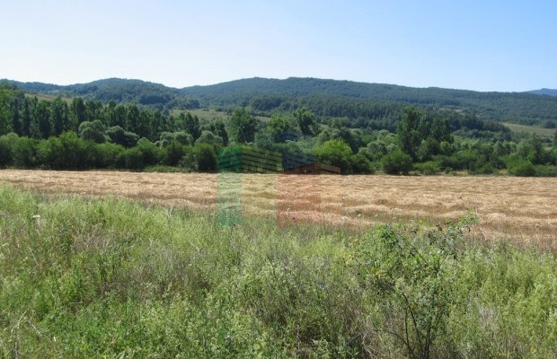 Снимка №7 Земеделска земя продава in Габрово област, Гостилица