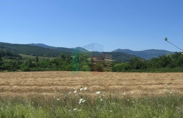 Снимка №8 Земеделска земя продава in Габрово област, Гостилица