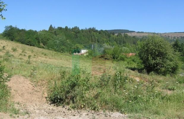 Снимка №10 Земеделска земя продава in Габрово област, Гостилица