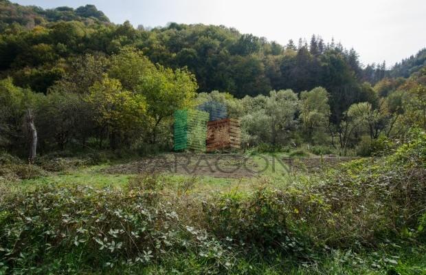Снимка №25 Селска къща продава in Габрово област, Селище