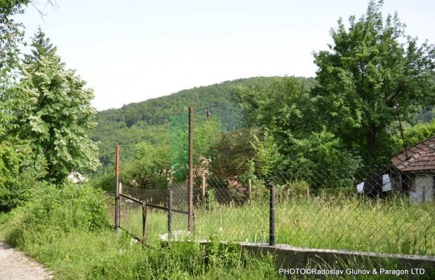 Снимка №6 Поземлен имот продава in Габрово, Славовци