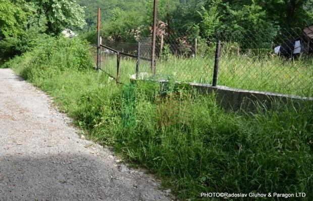 Снимка №7 Поземлен имот продава in Габрово, Славовци