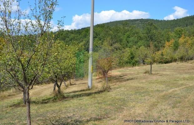 Снимка №14 Селска къща продава in Габрово област, Млечево