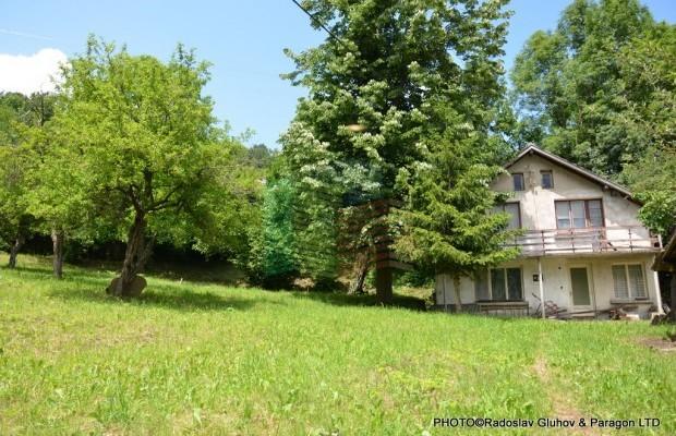Снимка №13 Селска къща продава in Габрово област, Зелено дърво