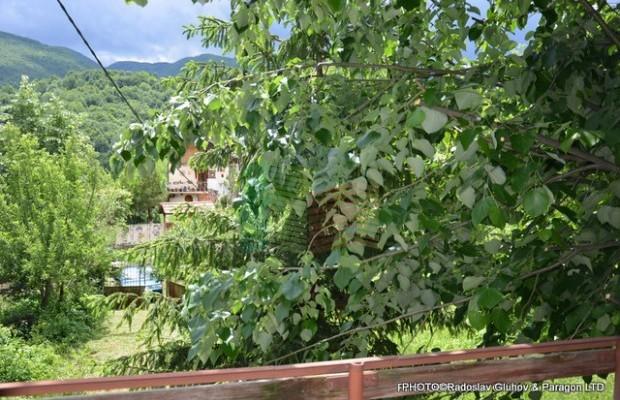 Снимка №17 Селска къща продава in Габрово област, Зелено дърво