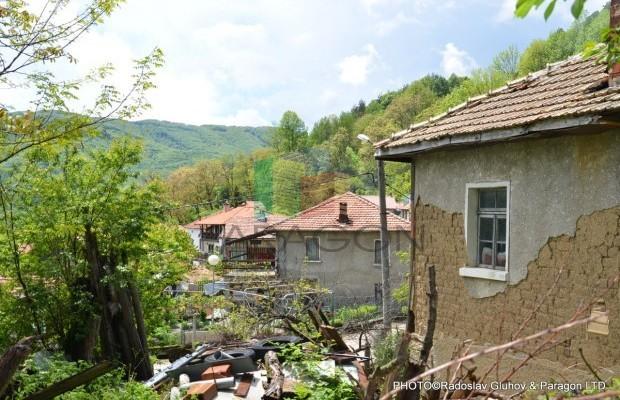 Снимка №11 Селска къща продава in Габрово област, Зелено дърво