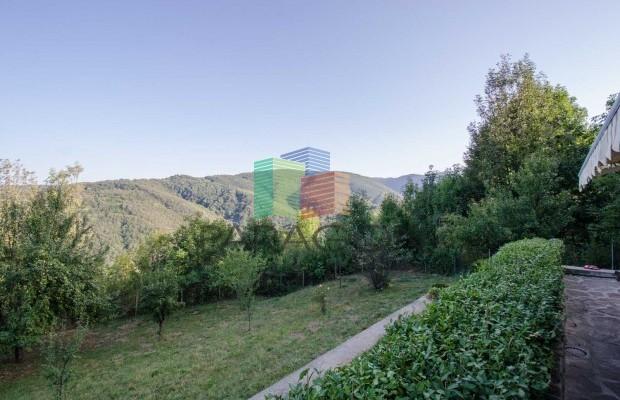 Снимка №8 Селска къща под наем in Габрово област, Зелено дърво