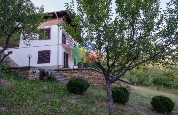 Снимка №9 Селска къща под наем in Габрово област, Зелено дърво
