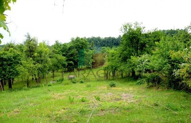 Снимка №10 Селска къща продава in Габрово област, Малини