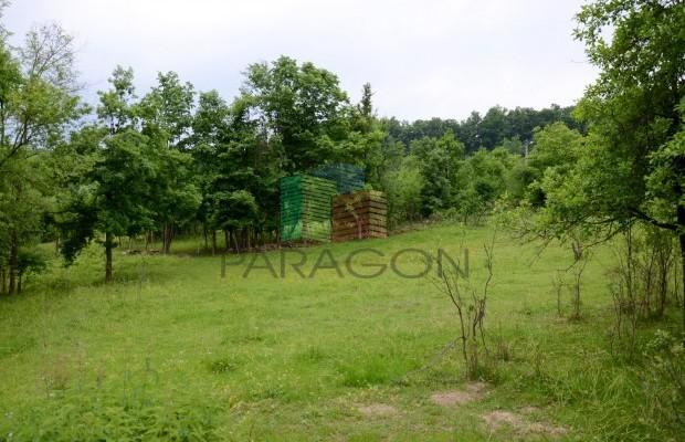 Снимка №11 Селска къща продава in Габрово област, Малини