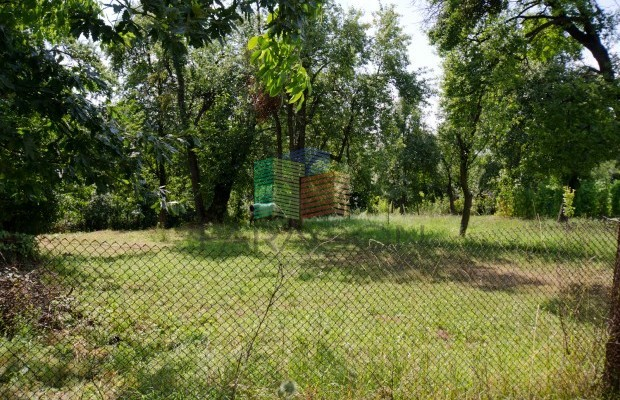 Снимка №18 Селска къща продава in Габрово област, Гергини