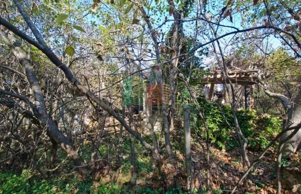 Снимка №19 Селска къща продава in Велико Търново, Капиново