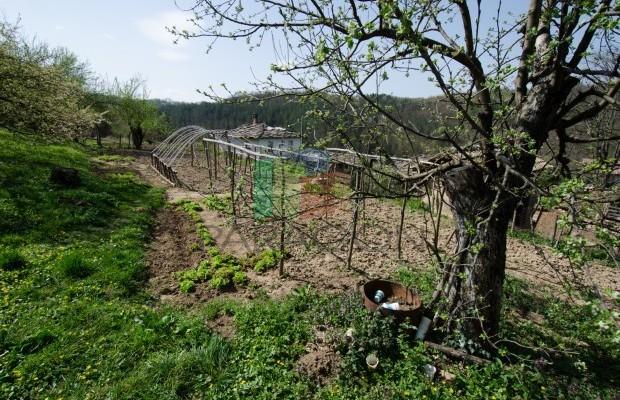 Снимка №33 Селска къща продава in Габрово област, Беломъжи