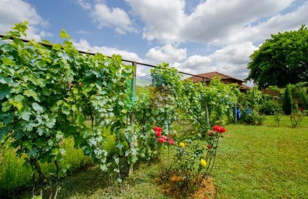 Снимка №18 Селска къща продава in Габрово област, Горна Росица