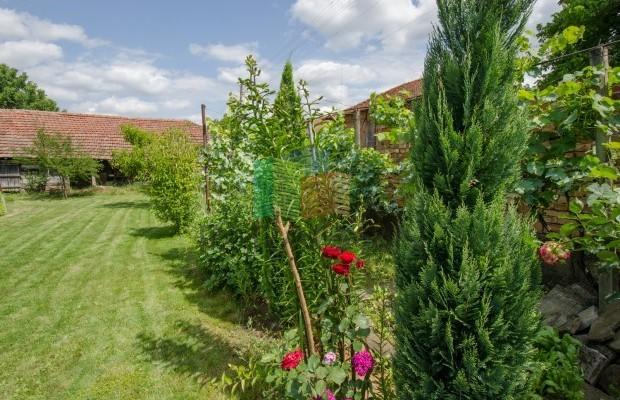 Снимка №52 Селска къща продава in Габрово област, Горна Росица