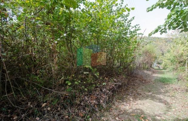 Снимка №8 Поземлен имот продава in Габрово област, Карамичевци