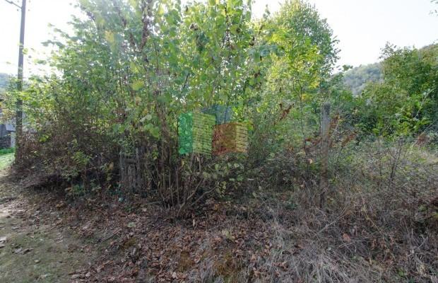 Снимка №9 Поземлен имот продава in Габрово област, Карамичевци