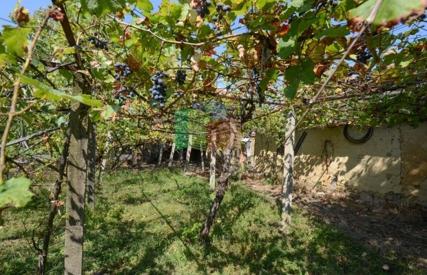 Снимка №18 Селска къща продава in Габрово област, Дебел Дял