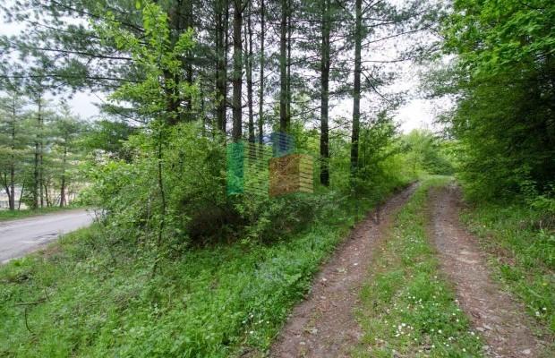 Снимка №4 Урегулиран парцел продава in Габрово, Сирмани