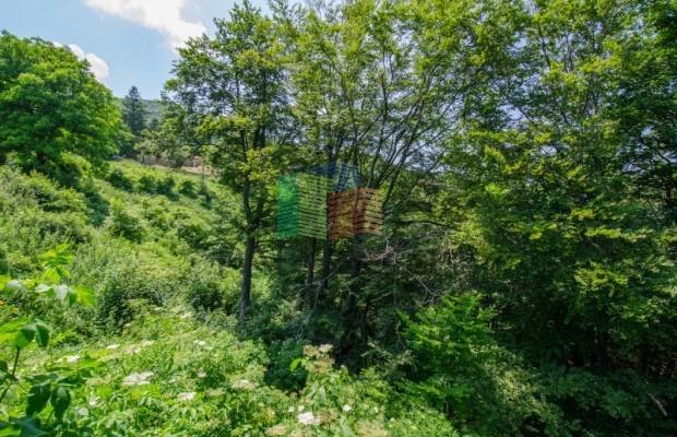 Снимка №81 Селска къща продава in Габрово област, Череша