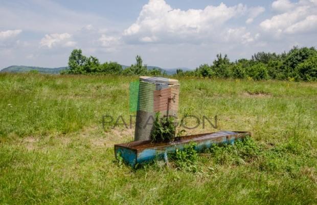 Снимка №124 Селска къща продава in Габрово област, Череша