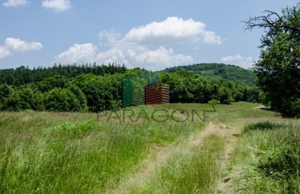 Снимка №136 Селска къща продава in Габрово област, Череша