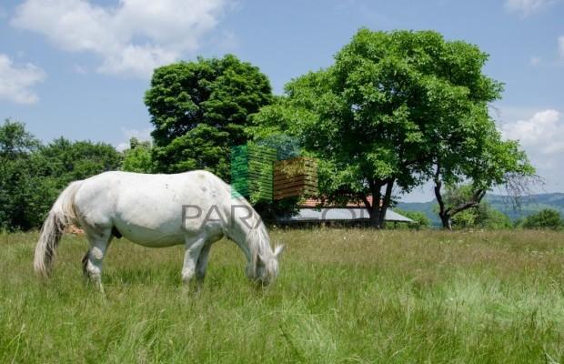 Снимка №137 Селска къща продава in Габрово област, Череша