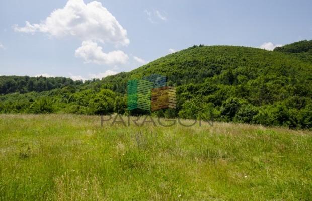 Снимка №139 Селска къща продава in Габрово област, Череша