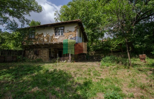 Снимка №4 Селска къща продава in Габрово област, Зелено дърво