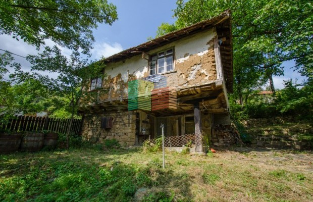 Снимка №16 Селска къща продава in Габрово област, Зелено дърво