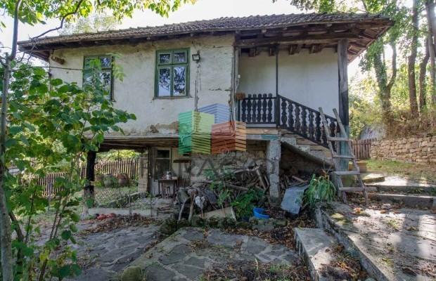 Снимка №43 Селска къща продава in Габрово област, Зелено дърво