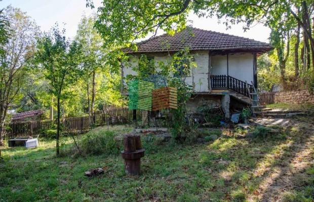 Снимка №10 Селска къща продава in Габрово област, Зелено дърво
