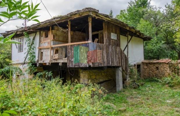 Снимка №3 Селска къща продава in Габрово област, Зелено дърво