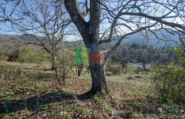 Снимка №7 Поземлен имот продава in Габрово област, Генчовци