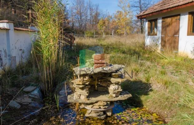 Снимка №35 Селска къща продава in Габрово област, Орловци