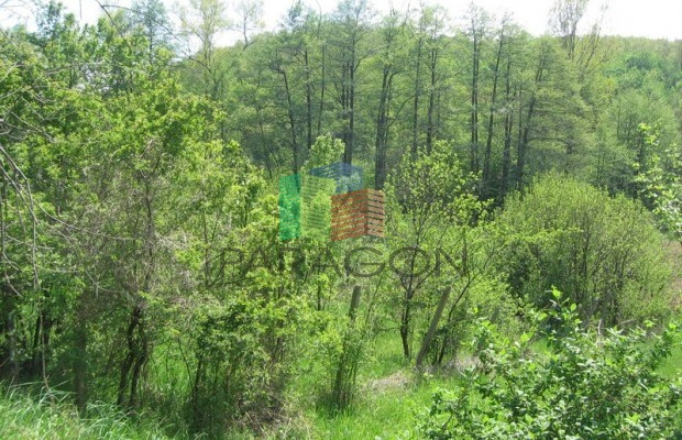 Снимка №2 Поземлен имот продава in Габрово област, Кметовци