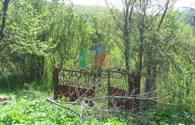 Снимка №5 Поземлен имот продава in Габрово област, Кметовци