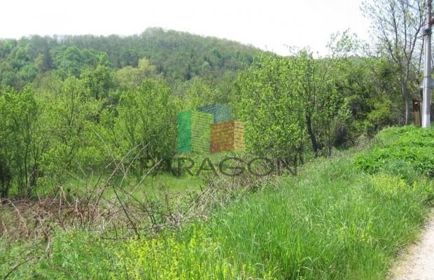 Снимка №6 Поземлен имот продава in Габрово област, Кметовци
