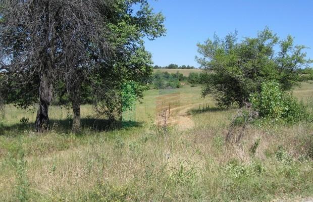 Снимка №2 Земеделска земя продава in Габрово област, Керека