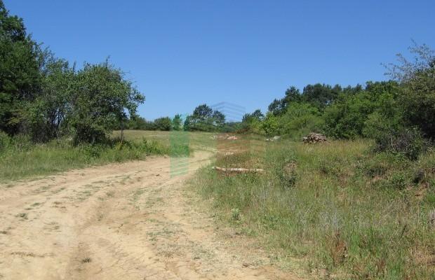 Снимка №7 Земеделска земя продава in Габрово област, Керека