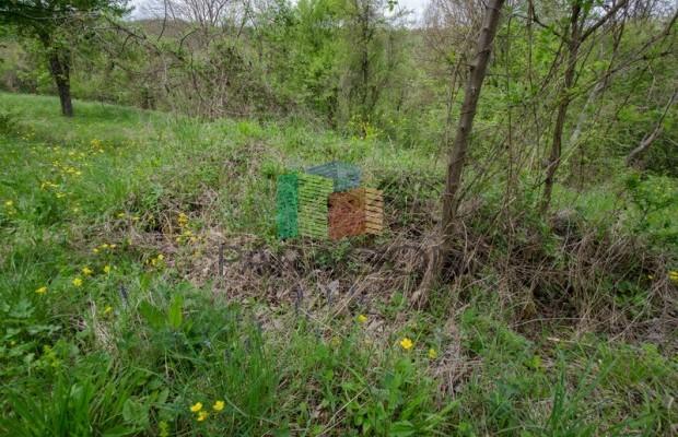 Снимка №55 Селска къща продава in Габрово област, Беломъжите