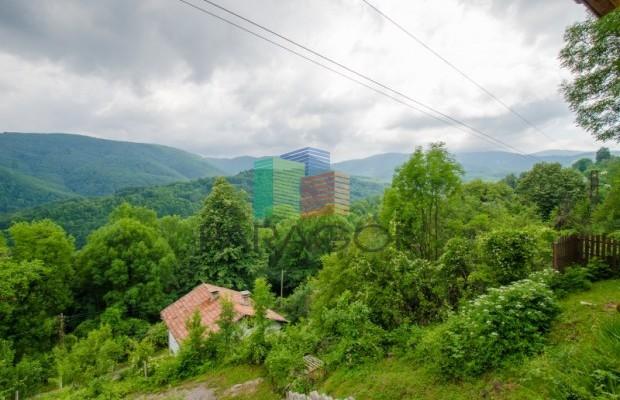 Снимка №27 Къща за гости продава in Габрово област, Зелено дърво