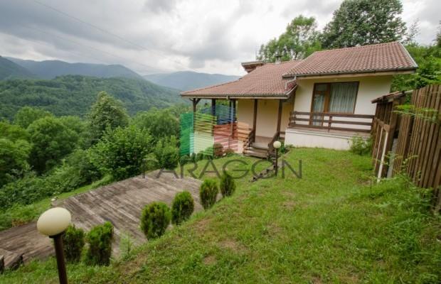 Снимка №43 Къща за гости продава in Габрово област, Зелено дърво