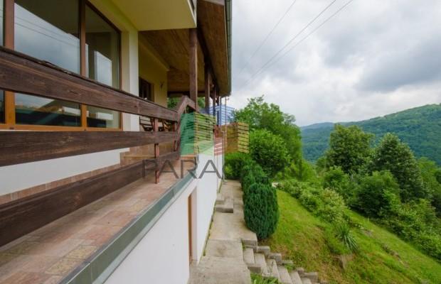 Снимка №44 Къща за гости продава in Габрово област, Зелено дърво