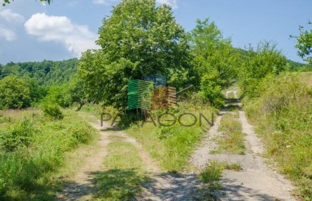 Снимка №2 Селска къща продава in Габрово, Гачевци