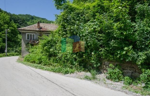 Снимка №13 Селска къща продава in Габрово, Ябълка