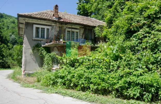 Снимка №15 Селска къща продава in Габрово, Ябълка