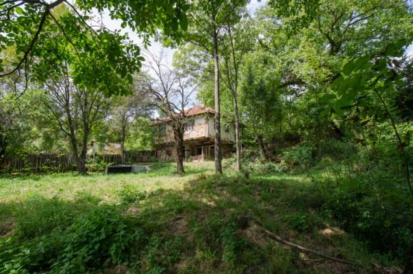 Виртуален тур Селска къща продава в Габрово област, Зелено дърво